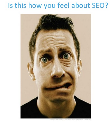 Is this how your feel about WordPress SEO?